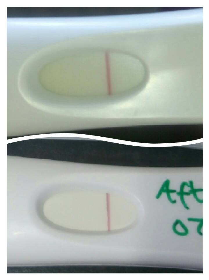 First Response    positive or a indent or evap line 12DPO