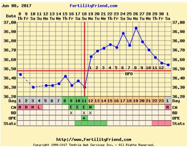 Bbt above coverline after ovulation | Netmums
