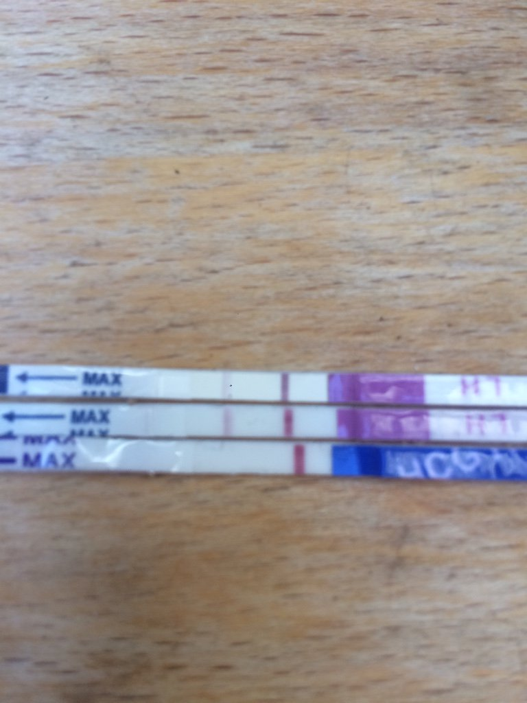 12 dpo and nearly positive opk    | Netmums