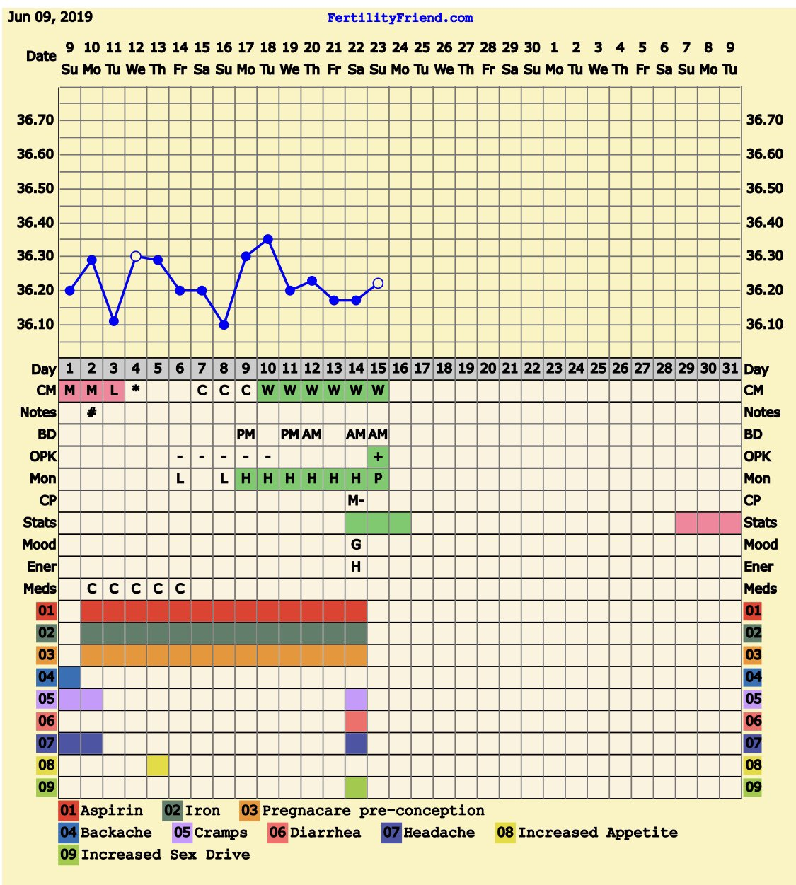 31 Day Cycle Bfp